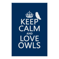 Matte Poster with Keep Calm and Love Owls design