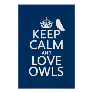 Keep Calm and Love Owls any color Posters