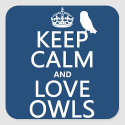 Square Sticker with Keep Calm and Love Owls design