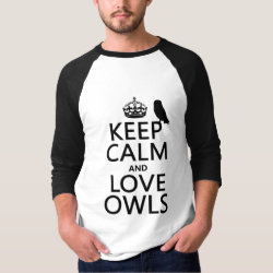 Men's Basic 3/4 Sleeve Raglan T-Shirt with Keep Calm and Love Owls design