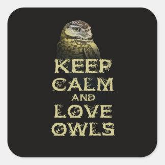Keep Calm and Love Owls Original Owl Gift Stuff Sticker