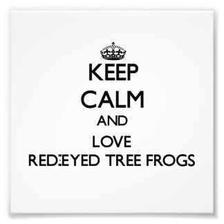 Keep calm and Love Red-Eyed Tree Frogs Photograph