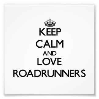 Keep calm and Love Roadrunners Art Photo