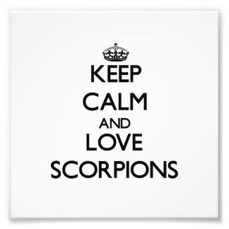 Keep calm and Love Scorpions Art Photo