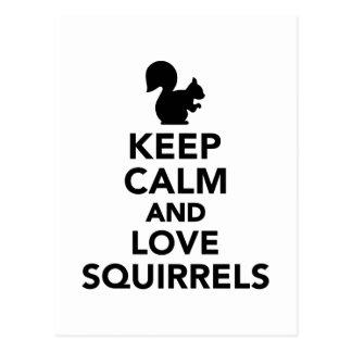 Keep calm and love Squirrels Postcard