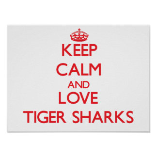 Keep calm and love Tiger Sharks Poster
