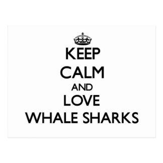 Keep calm and Love Whale Sharks Postcard