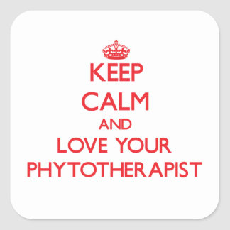 Keep Calm and Love your Phytotherapist Sticker