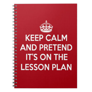 KEEP CALM AND PRETEND IT'S ON THE LESSON PLAN GIFT SPIRAL NOTEBOOK