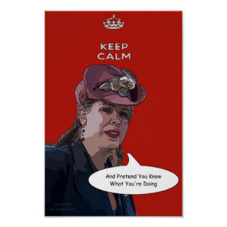 Keep Calm And Pretend You Know What You re Doing Posters