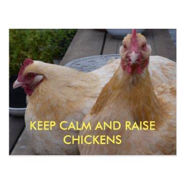 WillowTreePhotos Keep Calm and Raise Chickens Postcard