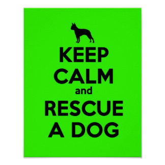 KEEP CALM AND RESCUE A DOG-Green Poster