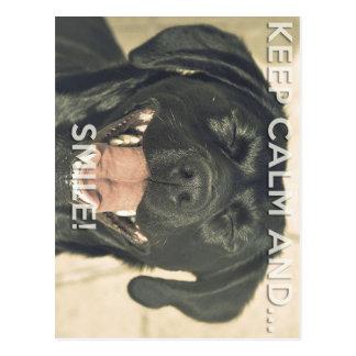 Keep calm and... Smile like a lab! Postcard