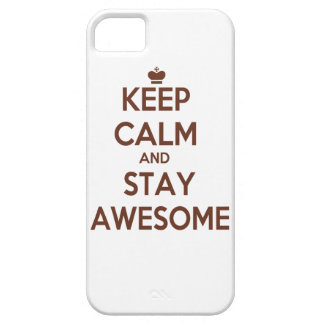KEEP CALM AND STAY AWESOME iPhone 5 CASE