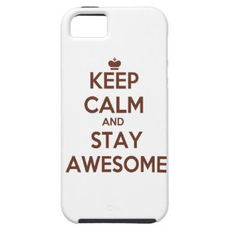 KEEP CALM AND STAY AWESOME iPhone 5 COVER