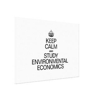 KEEP CALM AND STUDY ENVIRONMENTAL ECONOMICS GALLERY WRAP CANVAS