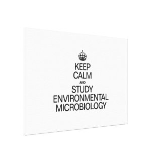 KEEP CALM AND STUDY ENVIRONMENTAL MICROBIOLOGY STRETCHED CANVAS PRINTS