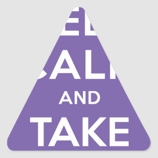 Keep Calm And Take Pictures Triangle Sticker