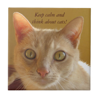Keep calm and think about cats! ceramic tile