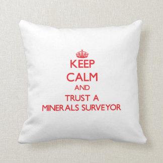 Keep Calm and Trust a Minerals Surveyor Throw Pillows