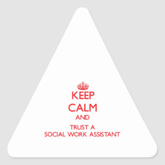 Keep Calm and Trust a Social Work Assistant Triangle Sticker