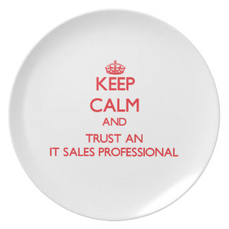 Keep Calm and Trust an It Sales Professional Party Plate