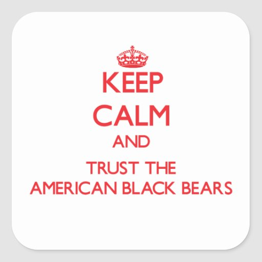 Keep calm and Trust the American Black Bears Square Sticker
