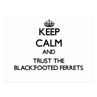 Keep calm and Trust the Black-Footed Ferrets Postcards