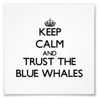 Keep calm and Trust the Blue Whales Photo