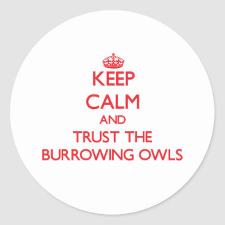 Keep calm and Trust the Burrowing Owls Round Sticker