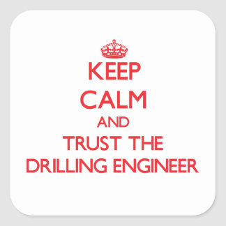 Keep Calm and Trust the Drilling Engineer Stickers