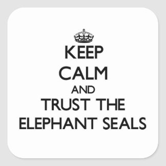 Keep calm and Trust the Elephant Seals Square Sticker