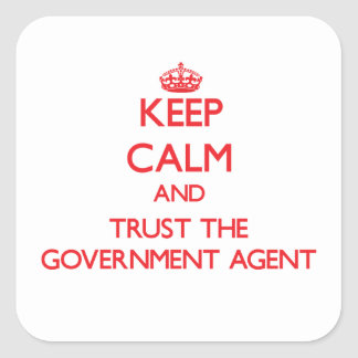 Keep Calm and Trust the Government Agent Stickers