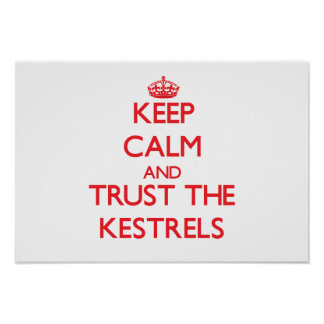 Keep calm and Trust the Kestrels Poster