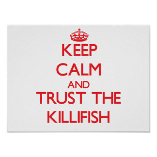 Keep calm and Trust the Killifish Poster
