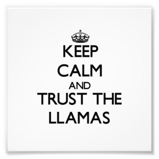 Keep calm and Trust the Llamas Art Photo