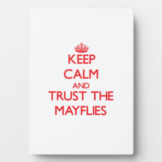 Keep calm and Trust the Mayflies Display Plaques