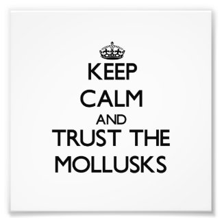Keep calm and Trust the Mollusks Photo Print