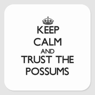 Keep calm and Trust the Possums Square Sticker