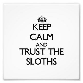 Keep calm and Trust the Sloths Art Photo