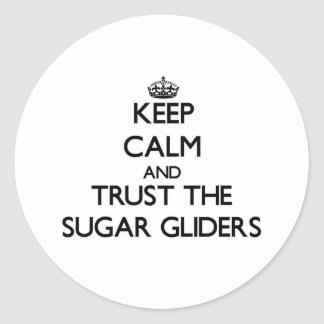 Keep calm and Trust the Sugar Gliders Classic Round Sticker
