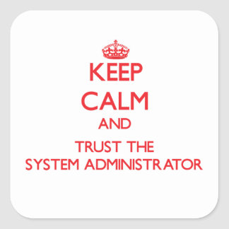 Keep Calm and Trust the System Administrator Square Stickers