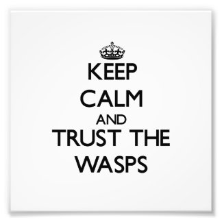 Keep calm and Trust the Wasps Photo