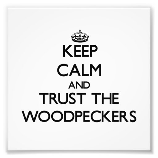 Keep calm and Trust the Woodpeckers Photo Art