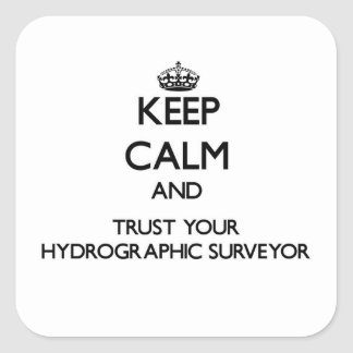 Keep Calm and Trust Your Hydrographic Surveyor Square Sticker