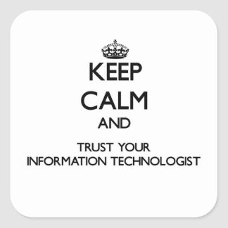 Keep Calm and Trust Your Information Technologist Square Stickers