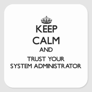Keep Calm and Trust Your System Administrator Stickers