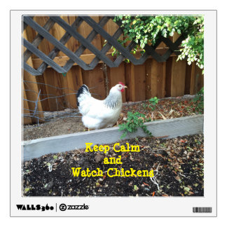 Keep Calm and Watch Chickens! Wall Sticker