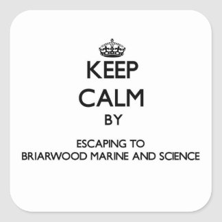 Keep calm by escaping to Briarwood Marine And Scie Square Sticker