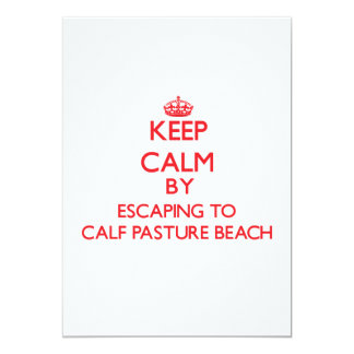 Keep calm by escaping to Calf Pasture Beach Connec Announcements